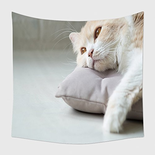 Home Decor Tapestry Wall Hanging Bored Cat Lying On Bed 448810912 for Bedroom Living Room Dorm