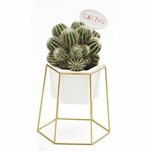 Planter Pot Indoor, Flowerplus 5 Inch White Ceramic Medium Succulent Cactus Flower Plant Hexagon Pots with Metal Stand Holder and Plants Sign for Indoors Outdoor Home Garden Kitchen Decor (Golden)
