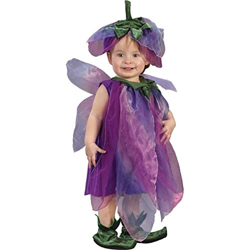 Child's Toddler Sugar Plum Fairy Costume (24M)