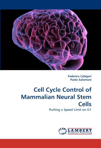 Cell Cycle Control Of Mammalian Neural Stem Cells  Putting A Speed Limit On G1