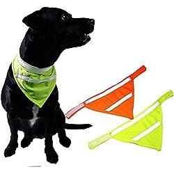Alalaso Reflective Pet Walking Safety Dog Triangular Bandage Night Running Neck Collar (Green,L)