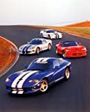 Best Decors For Lounge Cars - Dodge Vipers on Track Racing Classic Sports Car Review