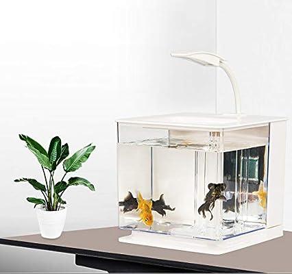Mini Fish Tank Aquarium, Living Room Small Desk Creative ...