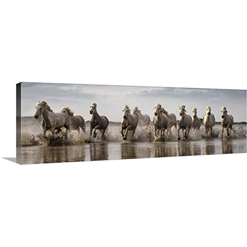 GREATBIGCANVAS Gallery-Wrapped Canvas Entitled The White Horses of The Camargue Running in The Water by Scott Stulberg 60