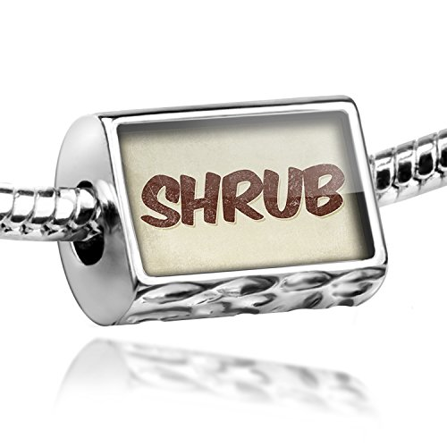 charm-shrub-cocktail-vintage-style-bead-fit-all-european-bracelets-neonblo