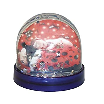 Dorr Christmas Snow Globe With Stars Photo Frame Amazoncouk