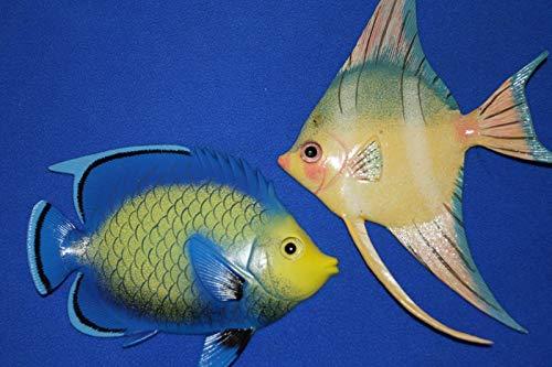 Colorful Ocean Fish Replicas 3-D Details Polyresin, (6