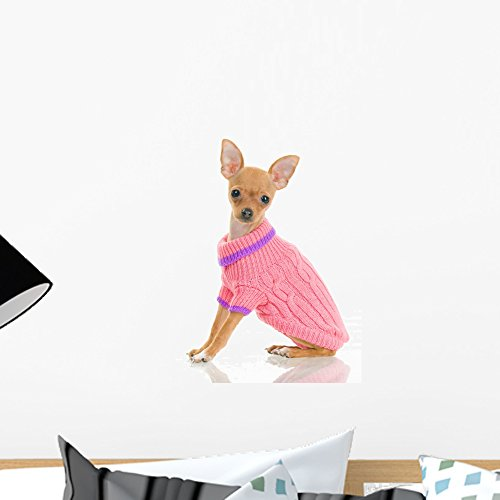 Chihuahua Dog Pink Sweater Wall Decal by Wallmonkeys Peel and Stick Graphic (18 in H x 12 in W) WM118042