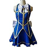 HOLRAN Fairy Tail Lucy Heartfilia Default Uniform Cosplay Costume Party Dress (XXL)