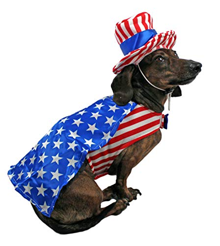 MidleeDesigns 4th of July Outfit for Small Dogs (Cape, Large) -