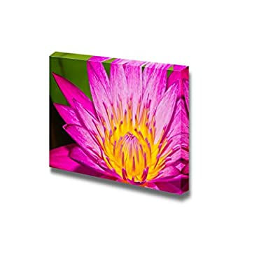 Canvas Prints Wall Art - Close Up of Pink Lotus Flower in a Pond | Modern Wall Decor/Home Decoration Stretched Gallery Canvas Wrap Giclee Print & Ready to Hang - 24