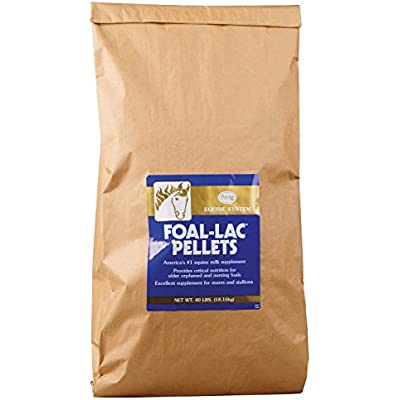 Click for Foal-Lac Instantized Powder
