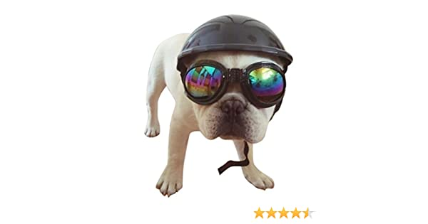 PanDaDa. Cosplay casco para mascotas para bicicleta, para andar en moto. Gorro de protección del sol y la lluvia. Sombrero de protección