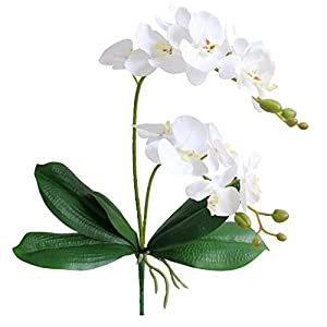 Jasming Artificial Phaleanopsis Flowers Fake Orchids Leaves Branches for Home Bonsai Garden Decoration (White)