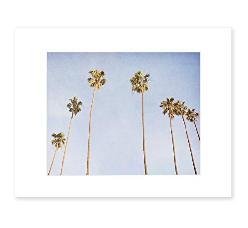 Venice Beach Palm Tree Wall Art, Tropical California Coastal Wall Decor Picture, 8x10 Matted Photographic Print (fits 11x14 frame), 'Venice Palms' by Offley Green