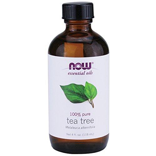 """Résultat de recherche d'images pour """"tea tree oil"""""""