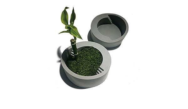Bonsai - Molde de silicona para maceta con forma de escalera hecho a mano con plantas suculentas: Amazon.es: Juguetes y juegos