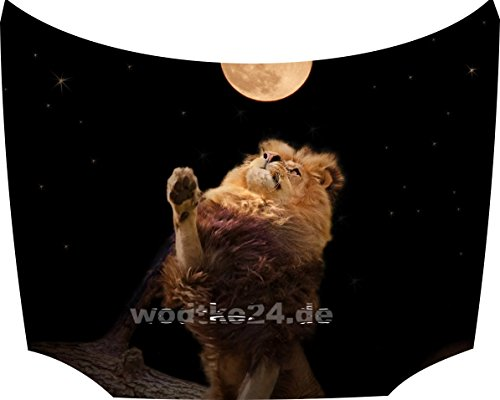 Bonnet Sticker Lion: