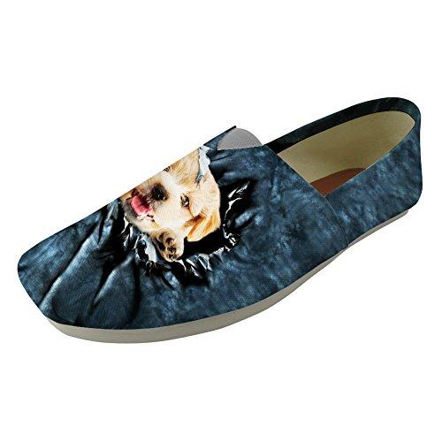 cc331z296 Femme Dog Bas Coloranimal K Puppy 5aSnnwpZvx