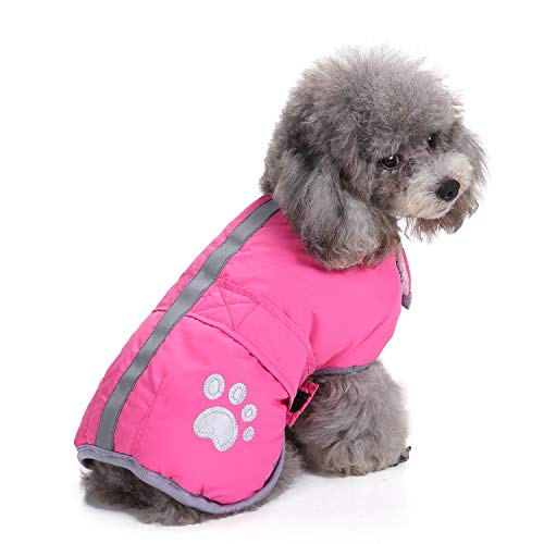 - Reversible Dog Winter Coat, Cozy Windproof Cold Weather Pet Autume Jacket, Refecting Brime Velcro Closure Adjustable Doggie Winter Apparel Warm Clothes, Paw Print Dog Coats for Small Medium Dogs