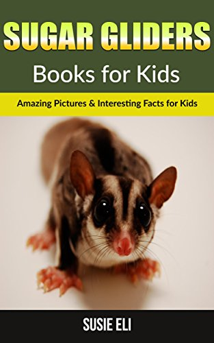Sugar gliders: Amazing Pictures & Interesting Facts for Kids (Books for Kids)