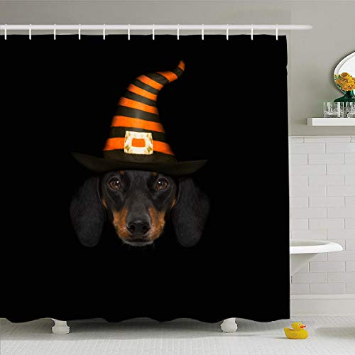 Ahawoso Shower Curtain 72x72 Inches Joke Wicked Devil Sausage Dachshund Scared Grass Frightened Dog Holidays Autumn Candle Ghost Waterproof Polyester Fabric Set with Hooks]()