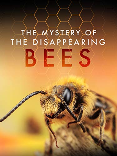 The Mystery of the Disappearing Bees
