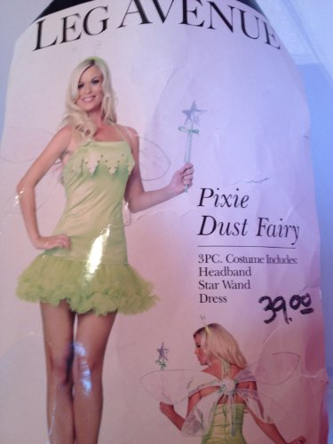 Pixie Dust Fairy Adult Costume -