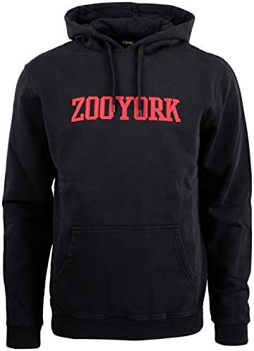Zoo York College Hoodie Schwarz