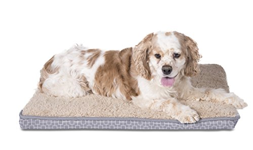 Sleepi Premium Double Orthopedic Pet Bed, 18