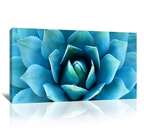 - Wall Art Blue Agave Canvas Prints Agave Flower Large Art Canvas Painting Extra Large Canvas Wall Art Print