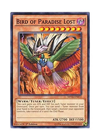 Yu-Gi-Oh! English Version MP 16-EN 072 Bird of Paradise Lost Hells Fallen Bird (Normal) 1st Edition (Best Version Of Paradise Lost)