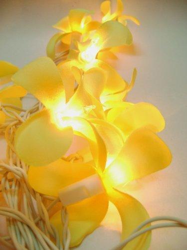 GaanZaLive36 Thai Handmade 20 Romantic Natural silk Flower Fairy String Lights Patio Wedding Party Vanity Kid Wall Lamp Floral Home Decor 3m (Frangipani,Yellow) by GaanZaLive36