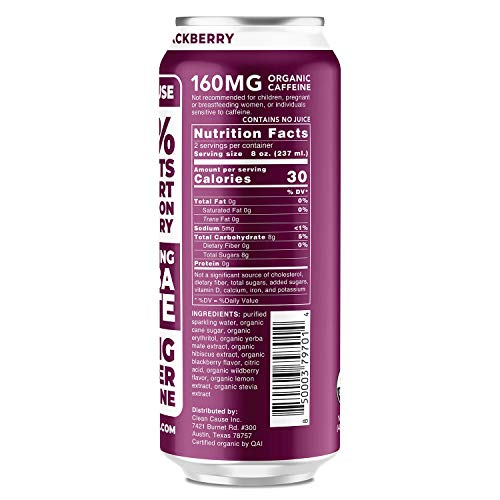 Blackberry Sparkling Yerba Mate - Organic, Low Calorie & Low Sugar (160mg Caffeine), 16oz cans, 12-pack - CLEAN Cause - 50% Profits Support Alcohol & Drug Addiction Recovery