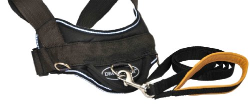 Dean and Tyler Combo - One ''DT Harness'' Reflective Large (32'' - 42'') With One Matching ''Padded Puppy'' Leash, 6 FT Stainless Steel Snap Hook - Black by Dean & Tyler