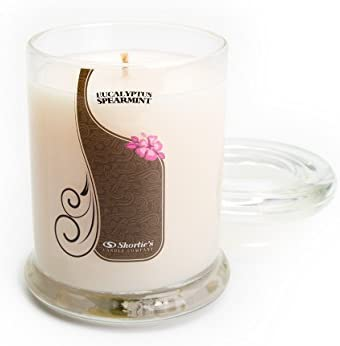 Eucalyptus Spearmint Candle - Small White 6.5 Oz. Highly Scented Jar Candle - Made with Essential & Natural Oils - Fresh & Clean Collection