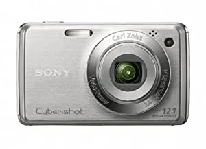 Sony Cyber-shot DSC-W230 12 MP Digital Camera with 4x Optical Zoom and Super Steady Shot Image Stabilization (Silver)