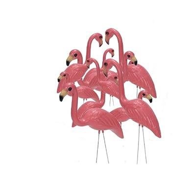 Pink Inc. 263/6 Flamingos, Salmon Pink , Set of 12