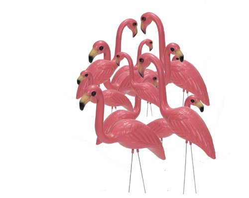 Pink Inc. 263/6 Flamingos, Salmon Pink , Set of 12