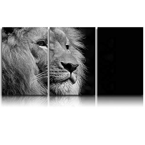 3 Pieces Canvas Print Wall Art for Office/Livingroom/Bedroom Black and White Lion's Side face Beard Stretched and Framed Modern Giclee Artwork Wall Decor 16x24inx3