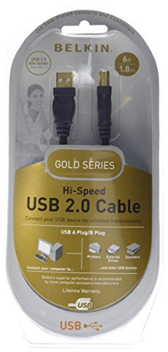 Belkin F3U133V 06 GLD 6 Foot Hi Speed Cable