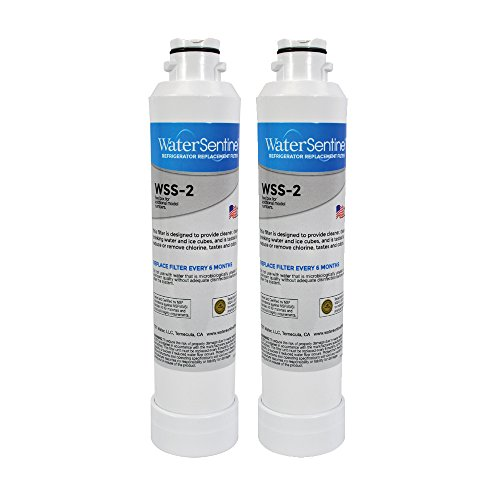 WaterSentinel WSS-2 Refrigerator Replacement Filter: Fits Samsung HAFCIN Filters (2-Pack)