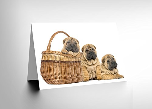 CARD GREETING SHARPEI PUPPY DOGS BASKET CUTE GIFT CL1719 (Gift Basket Dog Puppy)