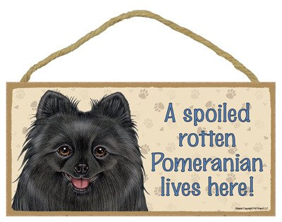 SJT ENTERPRISES, INC. A Spoiled Rotten Pomeranian (Black) Lives here Wood Sign Plaque 5