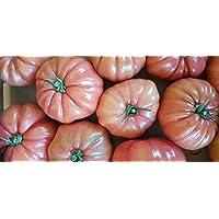 Conservas de tomates enteros