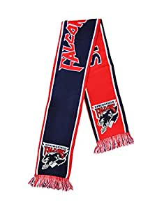 Springfield Falcons Knitted Scarf