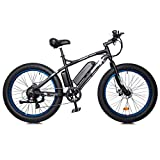 """ECOTRIC Electric Powerful Bicycle 26""""X4"""" Fat"""