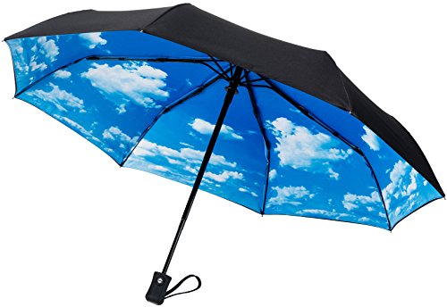 CrownCoast Heavy Duty Auto Open/Close Travel Umbrella, Windproof Up to 60 MPH Winds, Frame Won't Break if Flipped Inside/Outside (Small Best Wind For Umbrella)