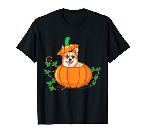 Corgis In Halloween Costumes (Funny Thanksgiving Corgi In a Pumpkin Gift )