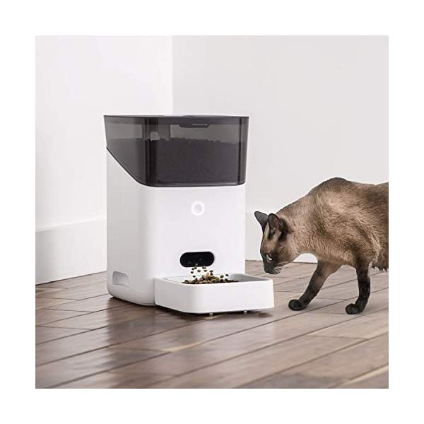 Petnet SmartFeeder (2nd gen) - Automatic Wi-Fi Pet Feeder with Personalized Portions for Cats and Dogs - App for Android, iOS and Compatible with Alexa - White 5
